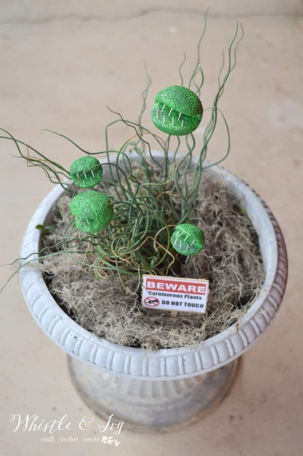 Halloween DIY - Carnivorous Plants   These creepy plants don't bite! ...too hard. With few supplies you can make these biting plants, perfect for Halloween!