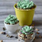 Crochet Succulents – Free Crochet Pattern
