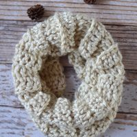 (almost) 30 Minute Crochet Cowl