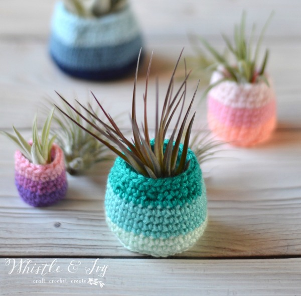 brightly colored crochet pots containing air plants