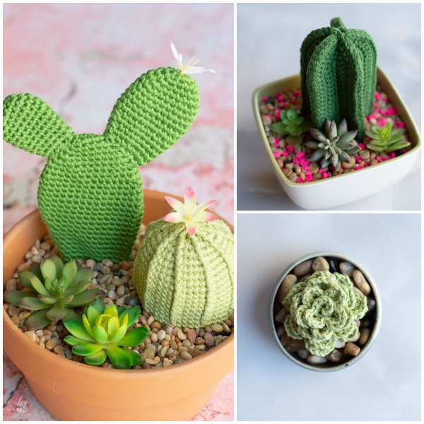 crochet succulent crochet cactuses crochet patterns