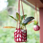 Crochet Plant Hanger – Free Crochet Pattern