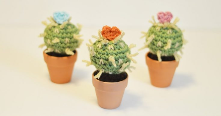Mother's Day Cactus Free Crochet Pattern