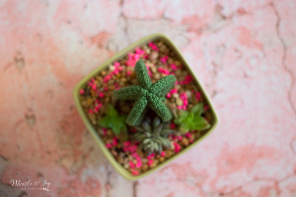 potted crochet cactus crochet pattern