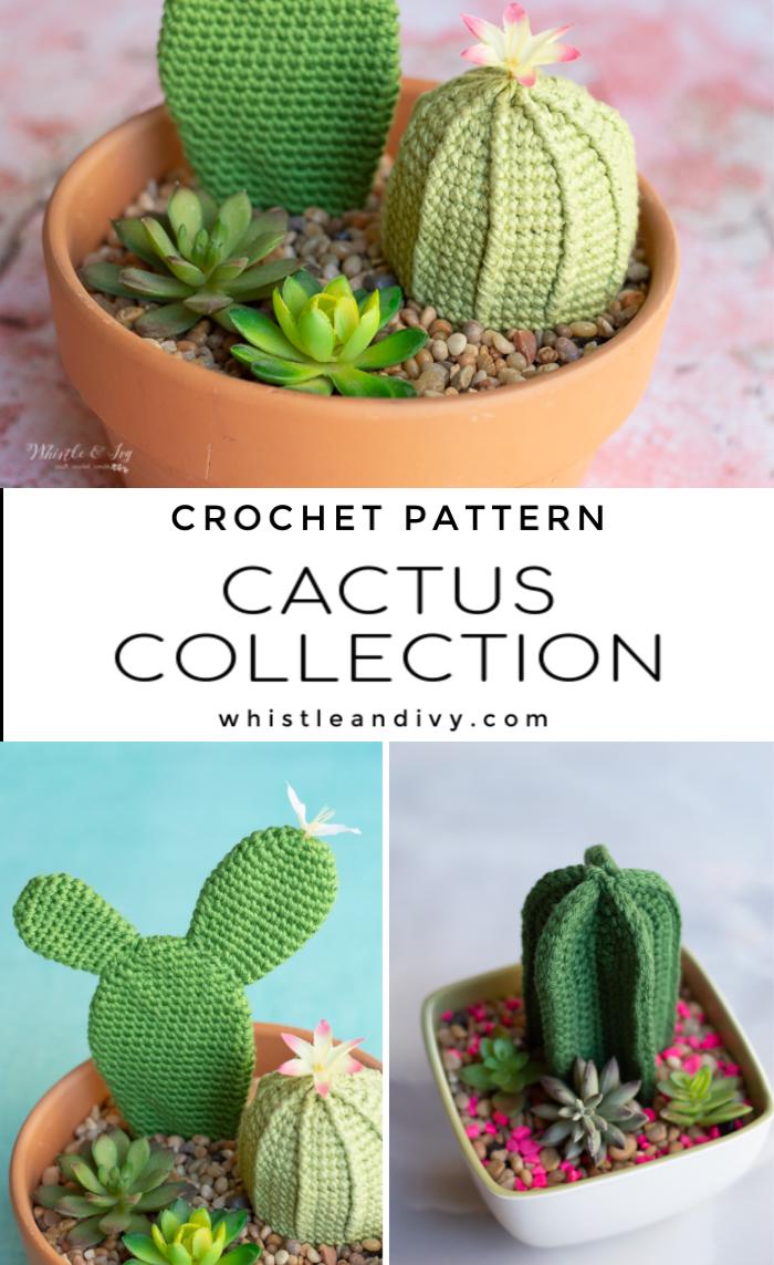 crochet succulents cactuses crochet pattern